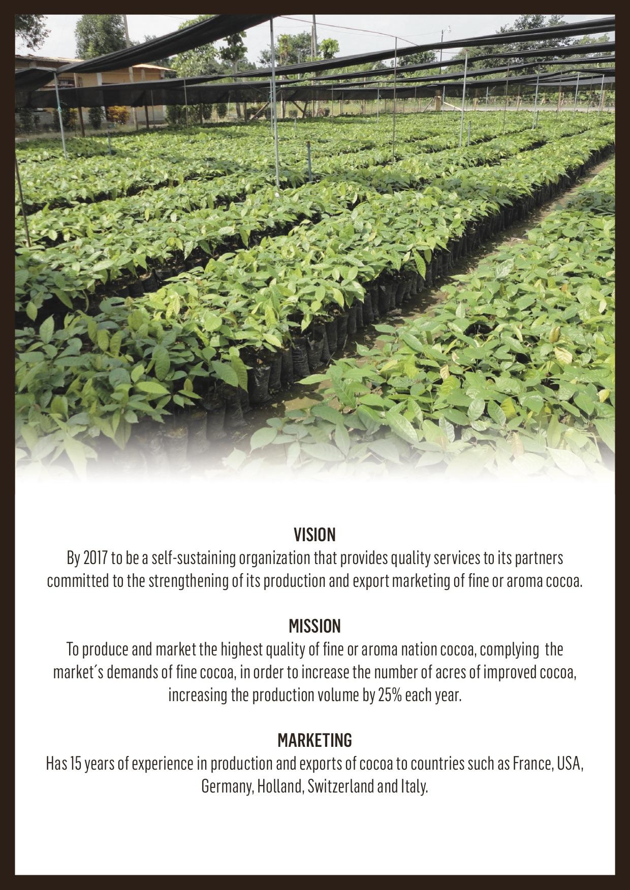 cocoa-bean-broker-brochure-page-3.jpg