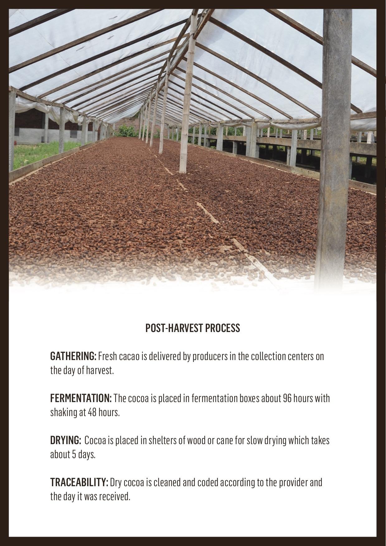 cocoa-bean-broker-brochure-page-4.jpg