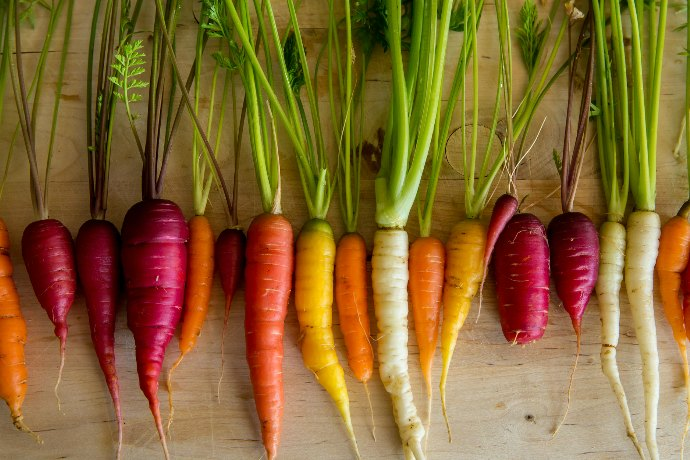 Cooked Carrots: Side Dishes for Spring