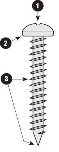 screws-largescrewimage.png