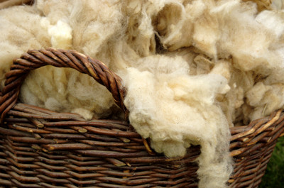 The Benefits of Wool Blends