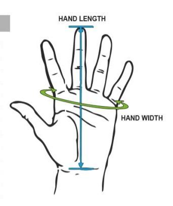 glove-hand-chart.jpg