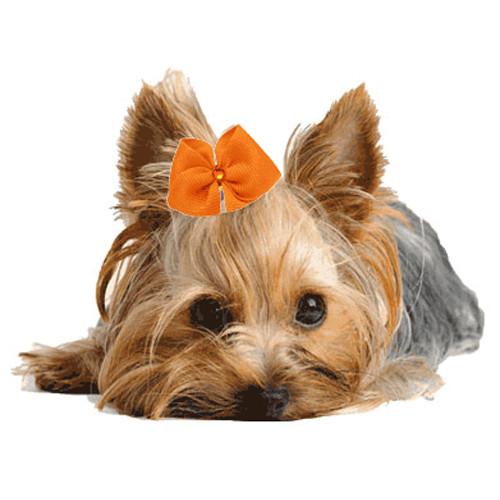 Tangerine Dog Hair Bow