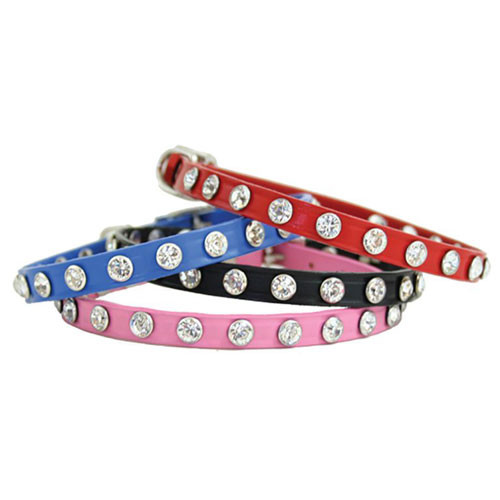 Mini Maddie Dog Collars