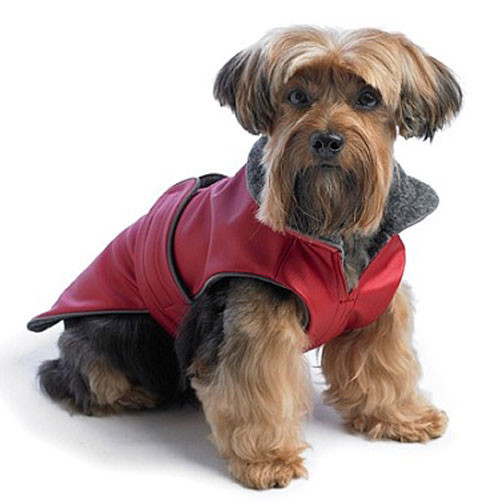 All Weather Dog Coat | Red