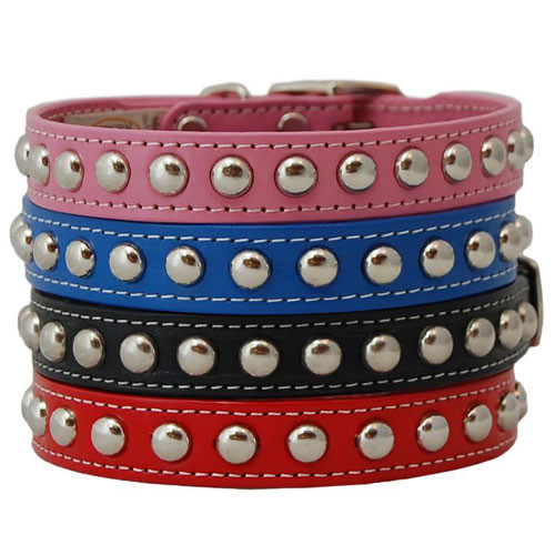 Studded Dog Collars