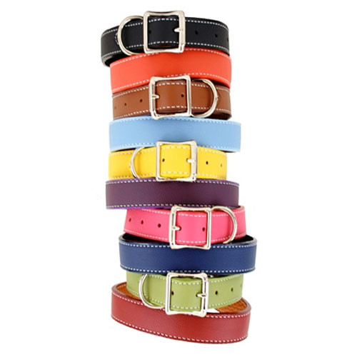 Tuscany Dog Collar