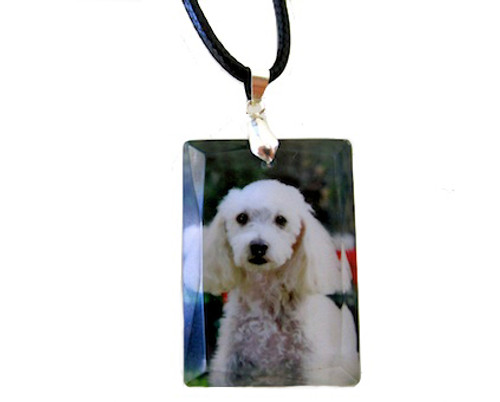 Custom Crystal Photo Necklace