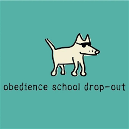 Obedience School Drop Out Ladies V Neck T-Shirt