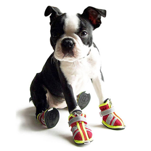 Reflector Dog Boots | Red
