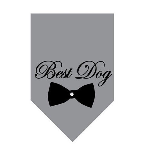 Pet Bandana | Best Dog