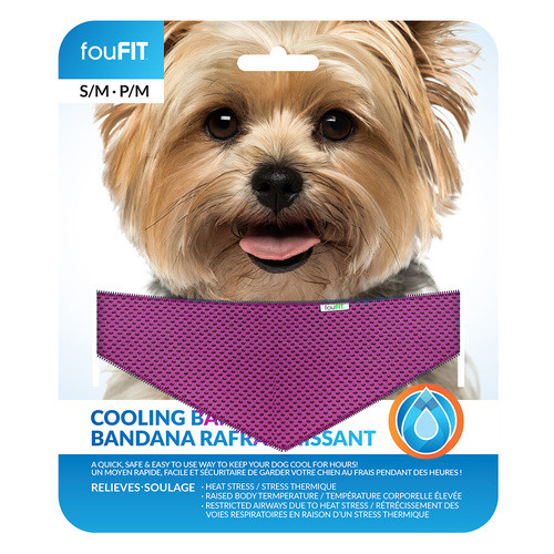 Cooling Dog Bandana | Pink