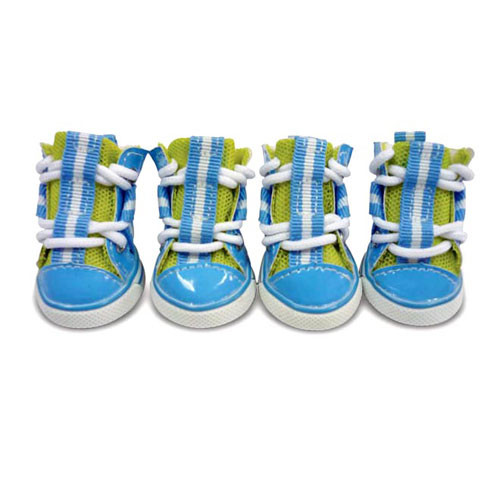 Sporty Dog Sneakers | Aqua Blue