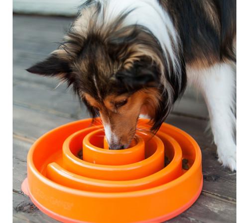 Healthy Non-Slip Slow Feeder | Orange