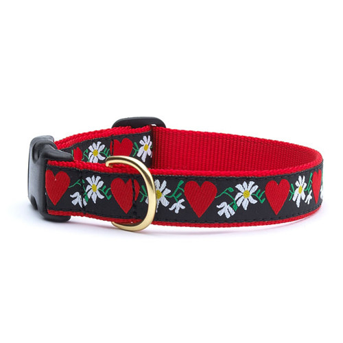 Hearts & Flowers Dog Collar