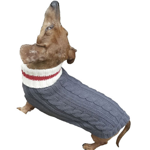 Preppy Puppy Dog Sweater