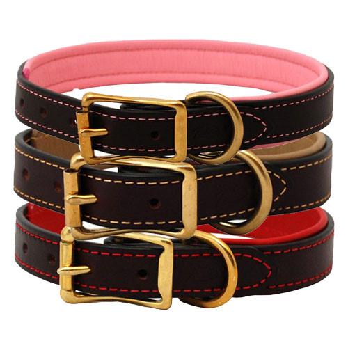 Padded Leather Dog Collar | Burgundy & Brass