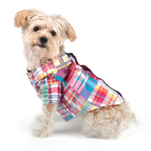 Worthy Dog Cotton Shirt | Madras Bright
