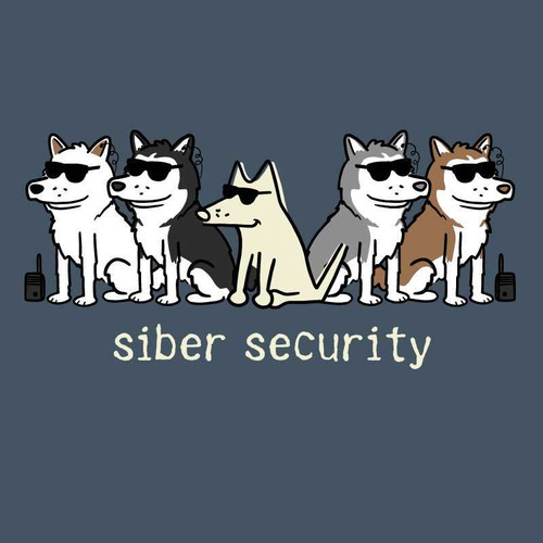 Siber Security Classic T-Shirt