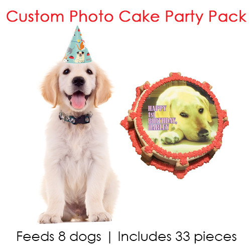 Cakes Supplies Whats A Dog Birthday