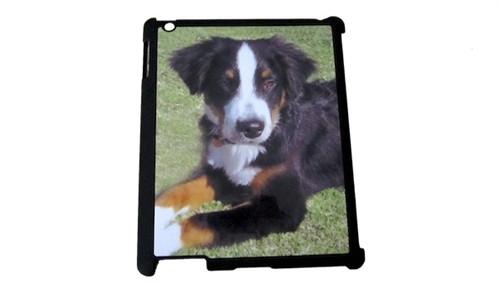 Custom iPad 2 / 3 / 4 Cover