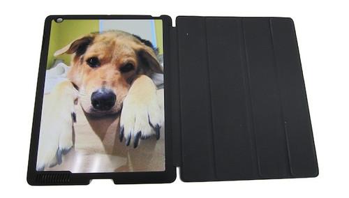Custom iPad 2 / 3 / 4 Smart Cover