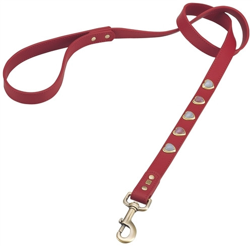 Heart Dog Leash