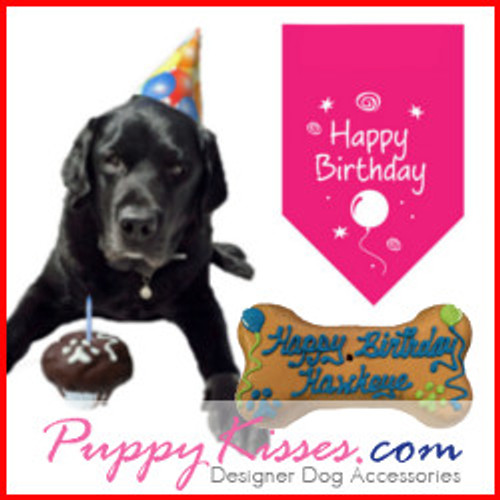 Dog Birthday Parties Cakes Gift Ideas For Dogs