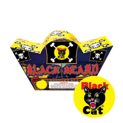 Black Cat Black Beard Fountain