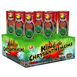 King of Chrusanthemums
