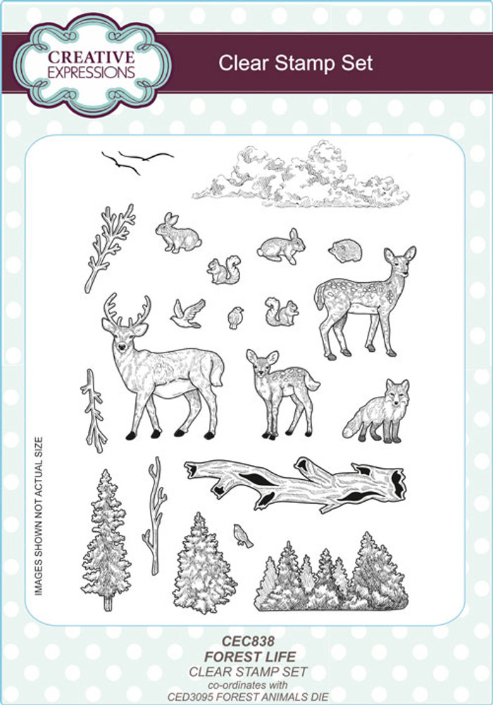 Creative Expressions Clear Stamp Set - Forest Life CEC838