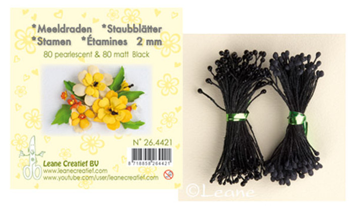 Leanne Creatief  Stamens - 2mm Black LCR26.4421
