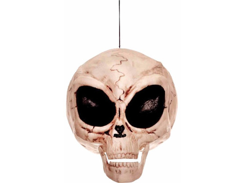 "This frighteningly realistic-looking alien skull looks like it could have been found in the desert near Area 51. Large almond-shaped eyes with small jaw means ""it's not like us"". 6 inches tall. Resin."