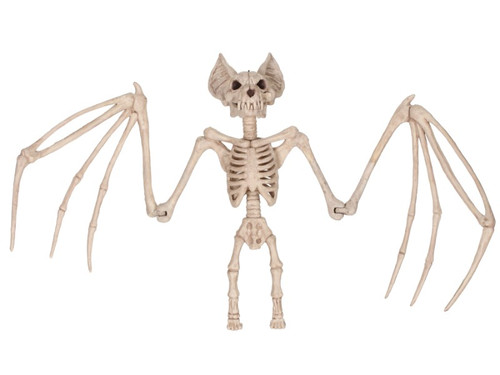 Large Skeleton Bat. Beware of this frightening vampire bat! The skeleton bat is made from molded plastic and has large pointy ears, a sharp toothy grin and long boney wings that fold in for the bat to hang. This icky creature is the perfect addition to your Halloween decor collection. 36 inch wingspan.
