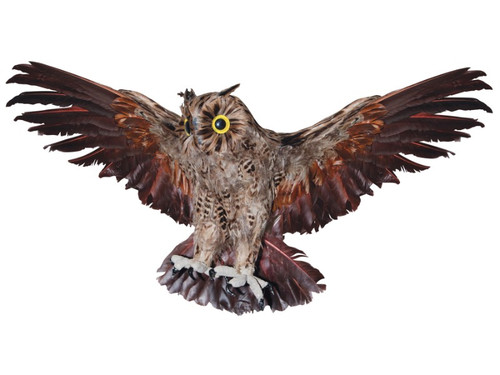 New 2017.  Haunted Brown Owl. If you need something sinister and spooky without using something cliche like a skull or a bat, these owls will do the trick for you and cause chills on your victim's spines! Brown owl with wings outstretched.  28 Inch Wing Span OR 19 Inch Wing Span