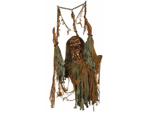 Hanging Rotten Zombie Corpse Prop. Sure to scare anyone who sees it! Gruesomely sculpted rotted corpse hangs from metal-looking chain. 5 Ft long. Constructed of latex head, vinyl hands, metal armature, and foam tubing. Width is 8 1/2 inches.