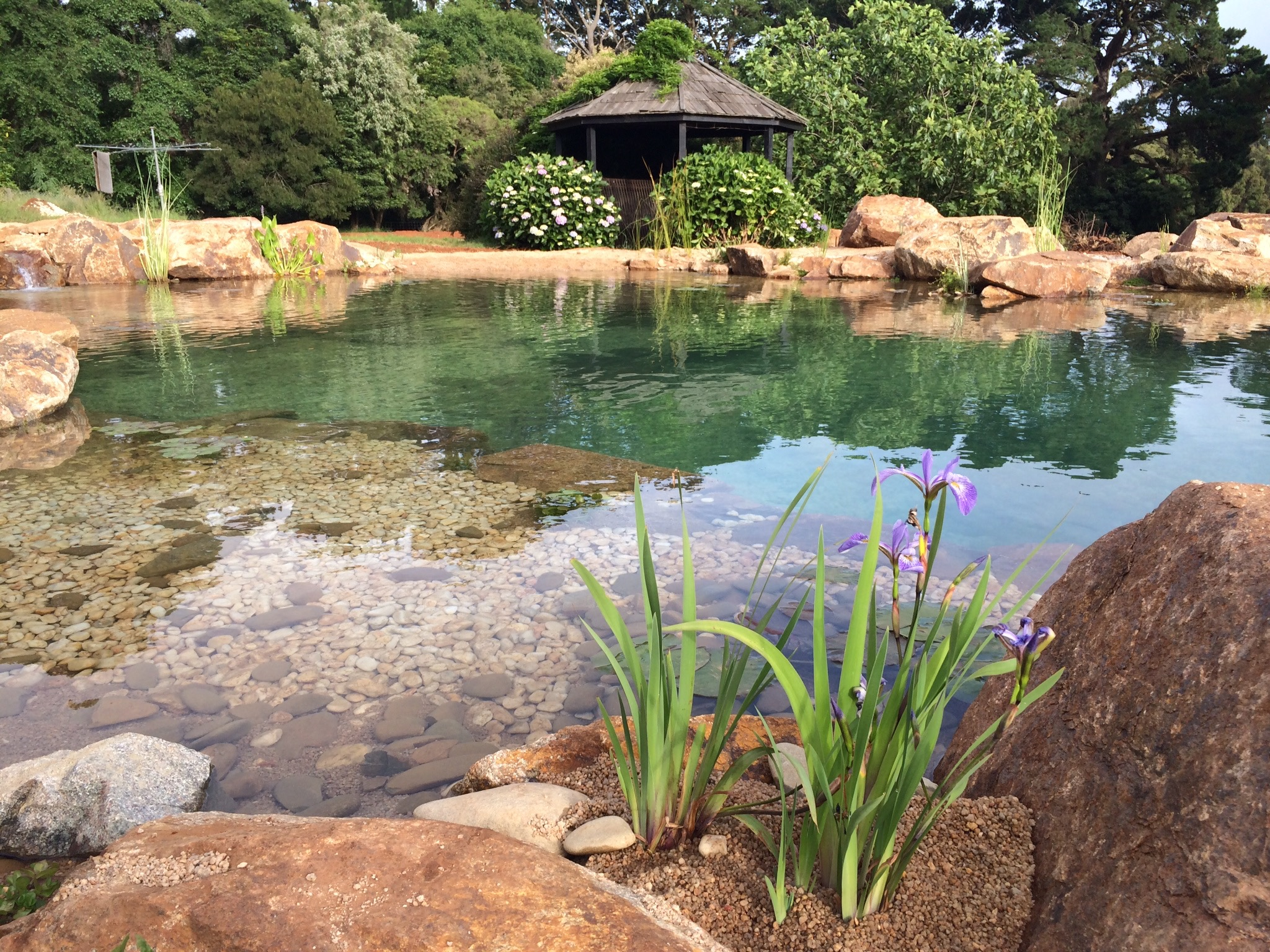 Large Ponds | Water Garden Designs | Aquascape Supplies ...