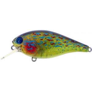 Biggie Smalls Bumpin Rattle Faster Floater Crankbait River2Sea Lure