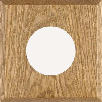 1-Instrument Oak Panel