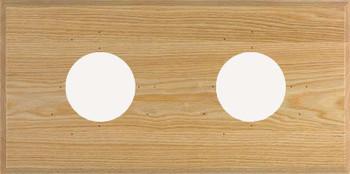2-Instrument Oak Panel