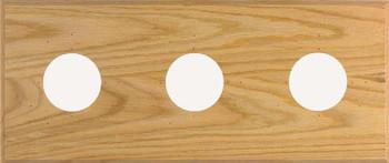 3-Instrument Oak Panel