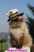 captain hat for cat