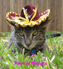 Sassy Sangria sombrero for cats and dogs