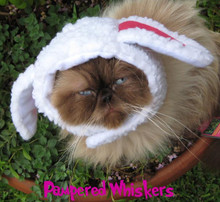 sheep hat for cat