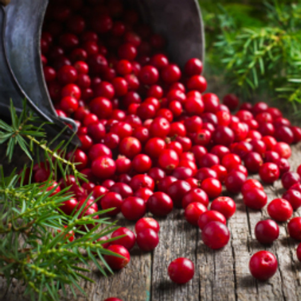 Cranberry Woods - BBW Type Fragrance Oil