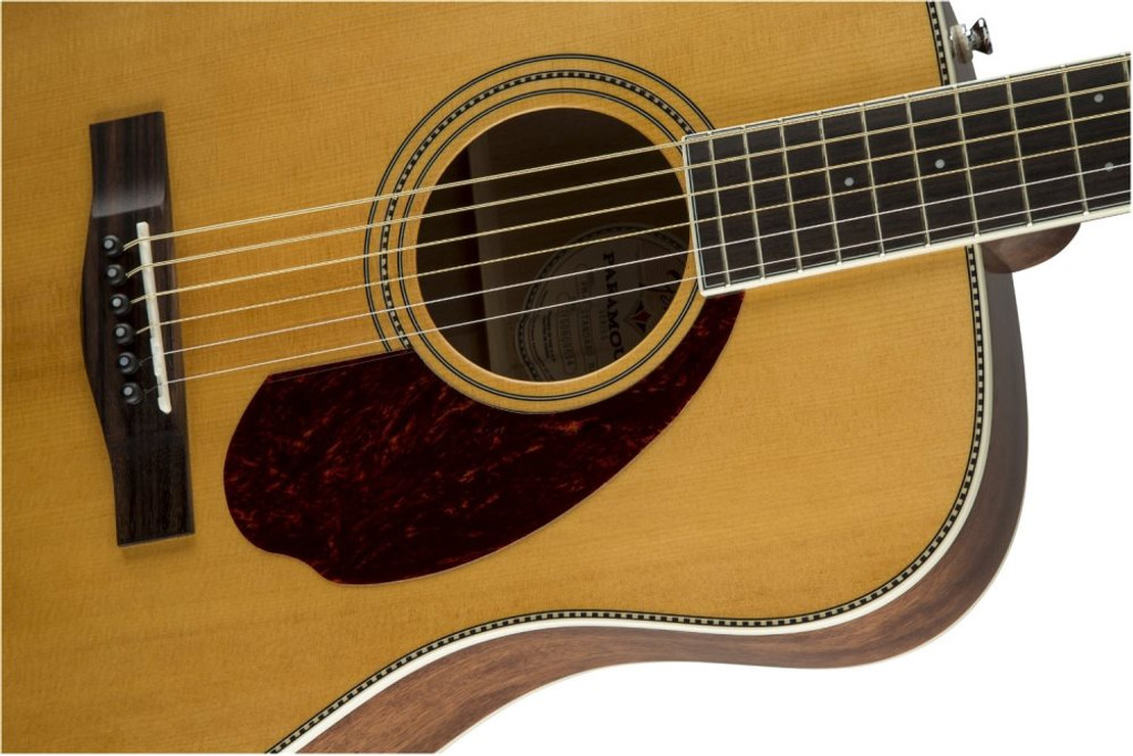Fender PM1S PM-1 Standard Dreadnaught Offset Front Facing