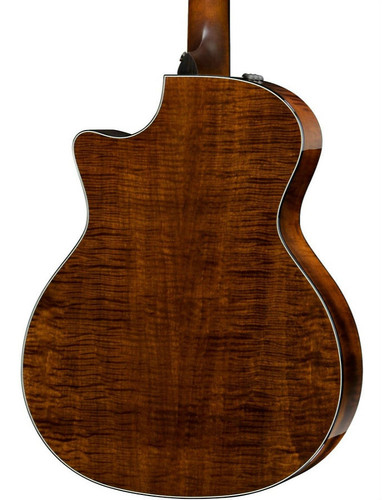 Taylor 614CE Rear Facing Closeup