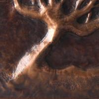 Detail - Original Artwork - Tree On A Tree (Copper on Walnut) by Brasscopper (Arianna Morales)