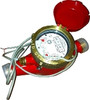 "3/4"" Brass Home HOT Water Meter with Pulse Output"