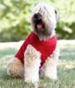 Custom Printed Dog T-Shirts, Doggie Skins Baby Rib Tank - Red